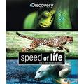 Speed Of Life- Discovery Channel