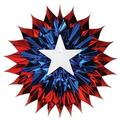 The Holiday Aisle® Patriotic Fan Burst in Blue/Red   Wayfair THLA1228 39060026