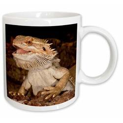 East Urban Home Bearded Dragon Lizard, Native To Australia Coffee Mug Ceramic in White, Size 3.75 H x 4.0 W in   Wayfair
