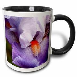 3dRose California, San Diego Bearded Iris Close Up Coffee Mug Ceramic in Black/Brown/Indigo, Size 4.75 H x 3.75 W in   Wayfair mug_250572_4