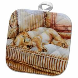 3dRose Little Lab Puppy Sleeping in The Sun on a En Striped Couch Potholder Cotton in White, Size 10.0 W in | Wayfair phl_44570_1