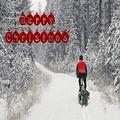 Mountain biker bringing home the family Christmas Tree near Whitefish Montana (MR) Poster Print (34 x 22)