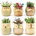 Dr.Jony Owl Pot Ceramic Flowing Glaze Base Serial Set Succulent Plant Pot Cactus Plant Pot Flower Pot Container Planter with A Hole Idea 6PCS/2.5 Inch