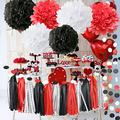 2021 Graduation Decorations Party Supplies Red and Black Minnie Mouse Party Supplies White Black Red Baby Ladybug Birthday Party Decorations/First Birthday Decorations Tissue Paper Pom Pom