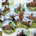 Creative Converting Wild Horse Birthday Party Supplies Kit GuestsPaper/Plastic in Brown/Green   Wayfair DTC4559E2A