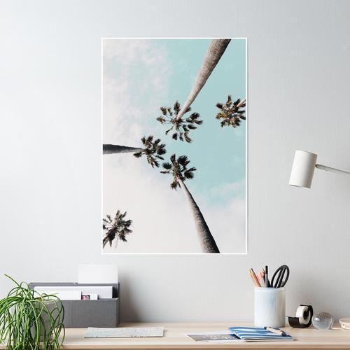 Palmen Palmen drucken Poster