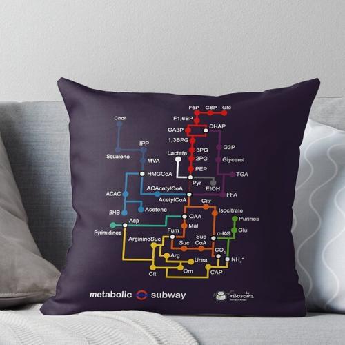 Metabolische U-Bahn Kissen