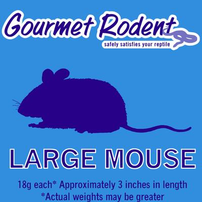 Frozen Large Mouse, Count of 10, 10 CT