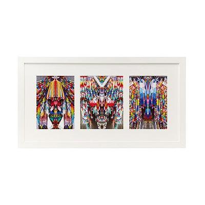 Cranes Triptych