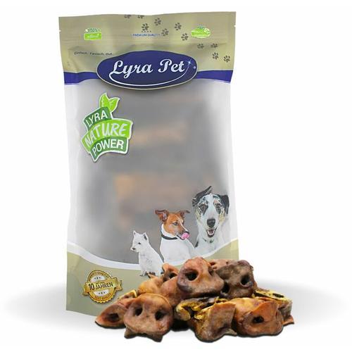5 kg ® Schweinenasen - Lyra Pet