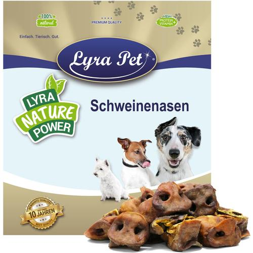 1 kg Lyra Pet® Schweinenasen