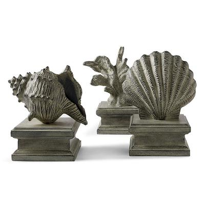 Shell on Plinth Collection - 12- 1/2H Coral - Frontgate
