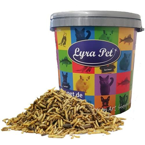 5 kg Lyra Pet® Soldatenfliegenlarven in 30 L Tonne