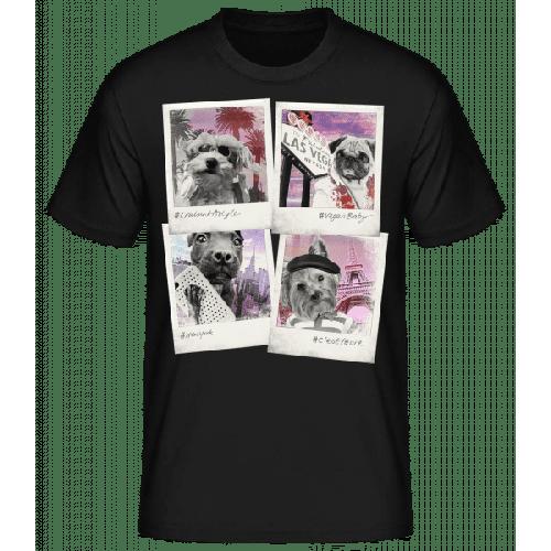 Hunde Polaroids - Basic T-Shirt
