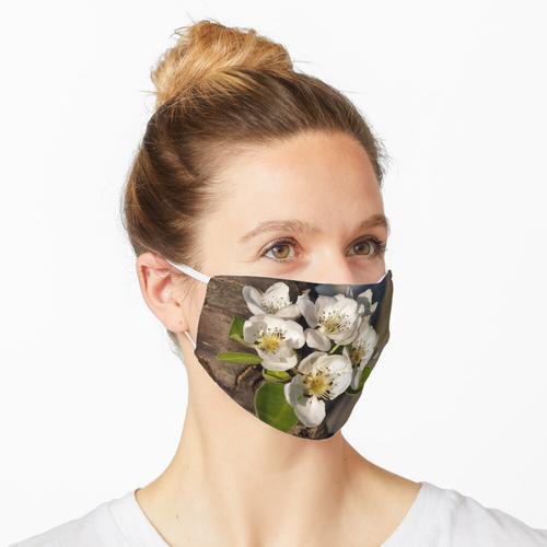 Birnbaumblüten Maske