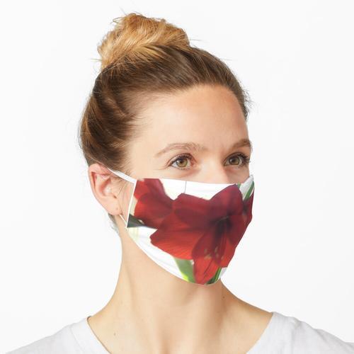 Amaryllis Maske