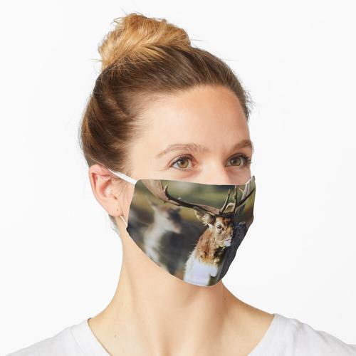 der Hirsch von Wychwood Maske