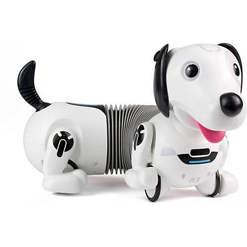 ROBO Dackel Roboterhund