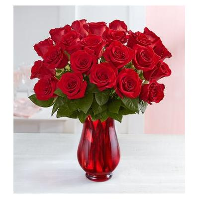 Red Roses, 24 Stems with Red Vase by 1-800 Flowers