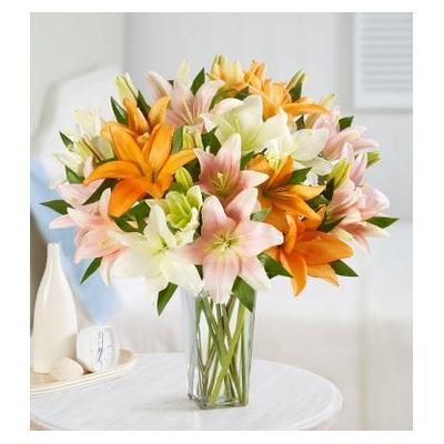 Vibrant Summer Lily Bouquet Double Bouquet with Clear Vase by 1-800 Flowers