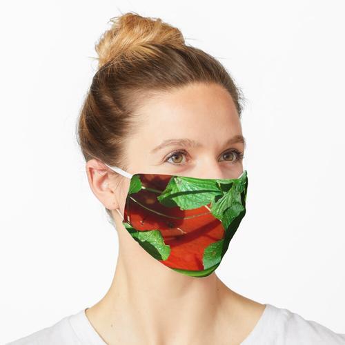 Tomatensauce und Gras Maske