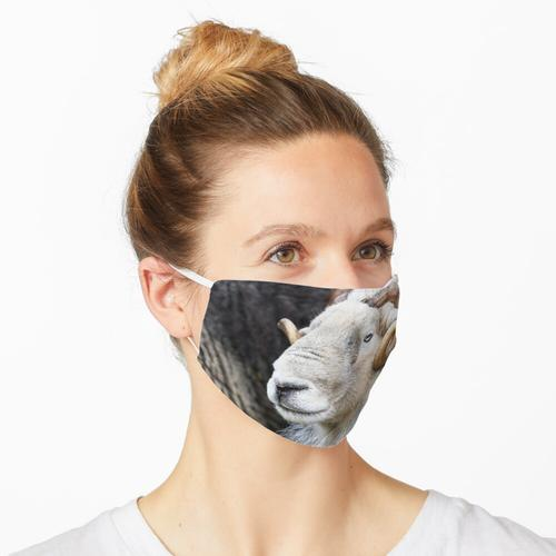Herdwick Sheep - Ram Maske