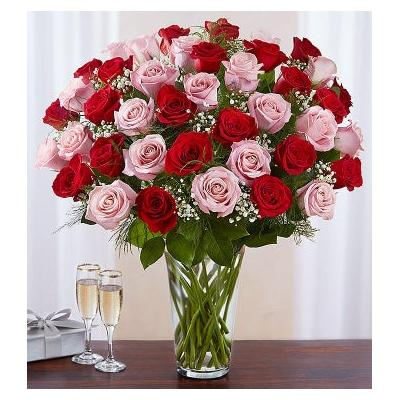 Ultimate Elegance Long Stem Pink & Red Roses 48 Stems Pink & Red by 1-800 Flowers