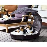 The Refined Feline Waterproof Covered Outdoor Dog Bed, Large, Espresso