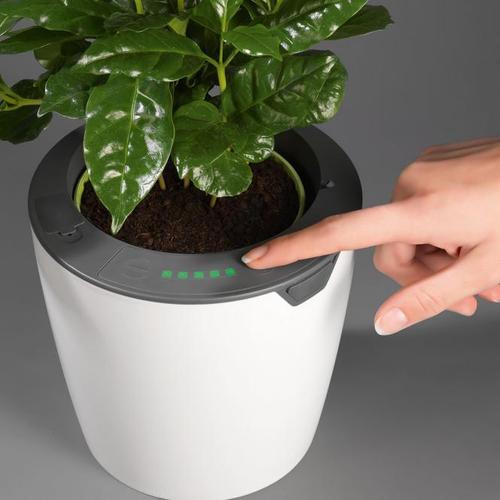 Übertopf mit Selbstbewässerungssystem, Klein, 17 cm