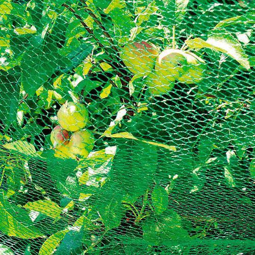 Vogelschutznetz 5x2m