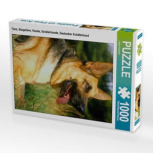Tiere, Säugetiere, Hunde, Schäferhunde, Deutscher Schäferhund Foto-Puzzle Bild von Lothar Reupert Puzzle