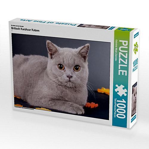Britisch Kurzhaar Katzen Foto-Puzzle Bild von weh-zet Puzzle