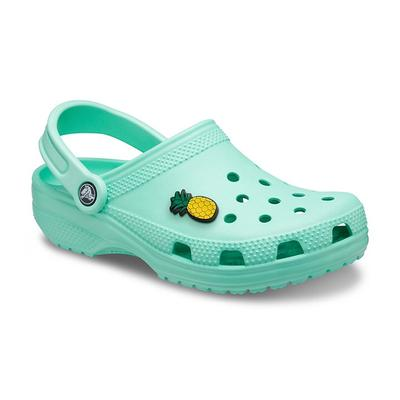 Crocs Pistachio Classic Clog Shoes