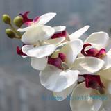 Fleur artificielle orchidée papi...