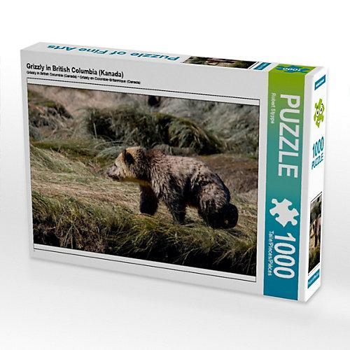 Grizzly in British Columbia (Kanada) Foto-Puzzle Bild von ROBERT STYPPA Puzzle
