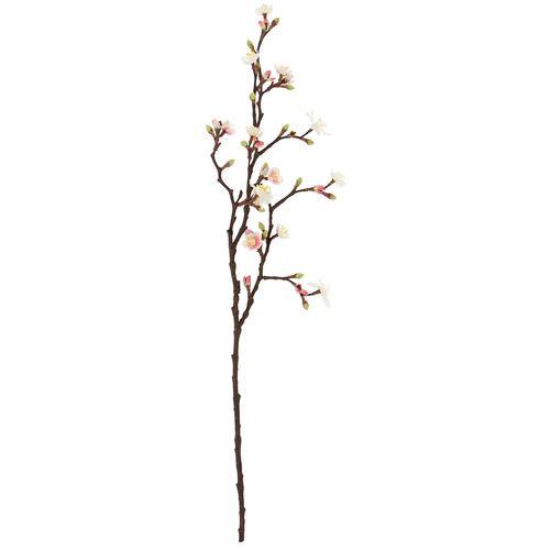 Kirschblütenzweig, creme/rosa