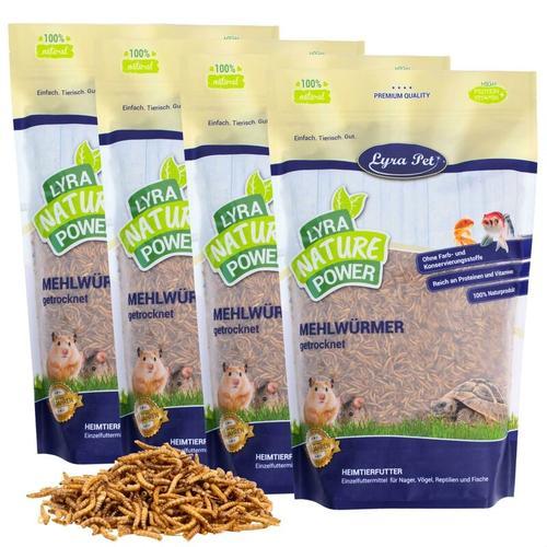 4 x 5 kg ® Mehlwürmer getrocknet - Lyra Pet