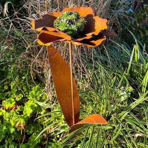 Beetstecker Blumenblüte, Edelrost
