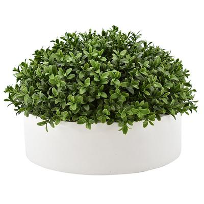 Outdoor Half Dome Boxwood in Ceramic Bowl - Frontgate