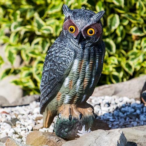 Eule mit Vogelschreckwirkung