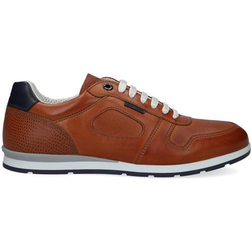 VAN LIER Cognacfarbene Sneaker Low Diego