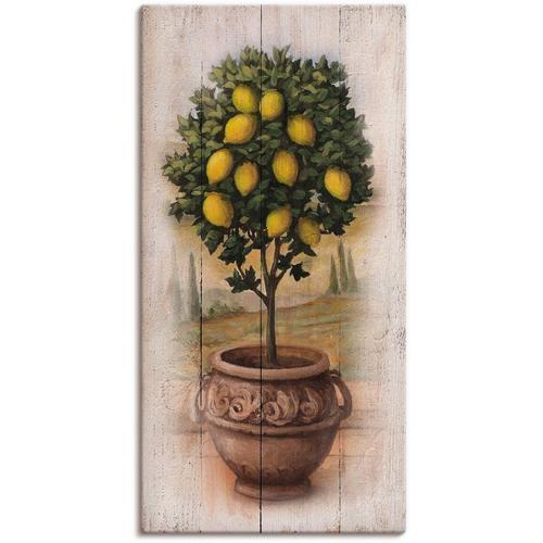 Artland Wandbild »Zitronenbaum mit Holzoptik«, Bäume (1 Stück)