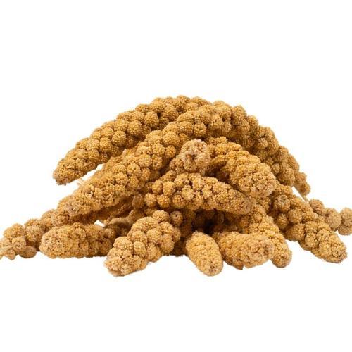4 kg ® Kolbenhirse gelb - Lyra Pet