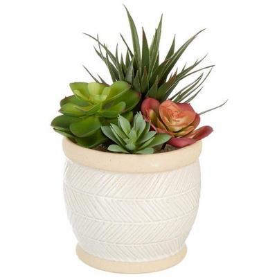 Siena Floral 10'' Succulent Potted Decor