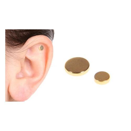 Magnetische Anti-Rauch-Ohrringe: 2 Paar