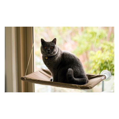Fenster-Liege mit Saugnäpfen für Katzen: 2