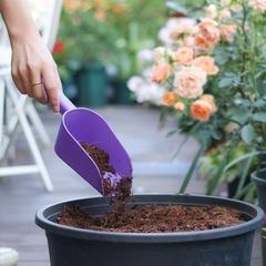 Pelle De jardin en plastique, outils De bonsaï, plante, main, truelles, sols, outils De jardin pour