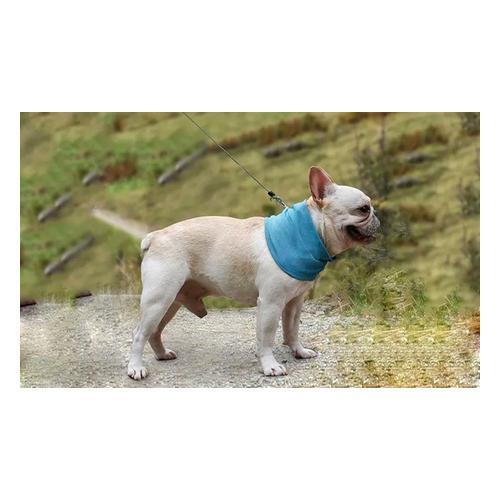 Kühlendes Hunde-Halstuch: 4 / L