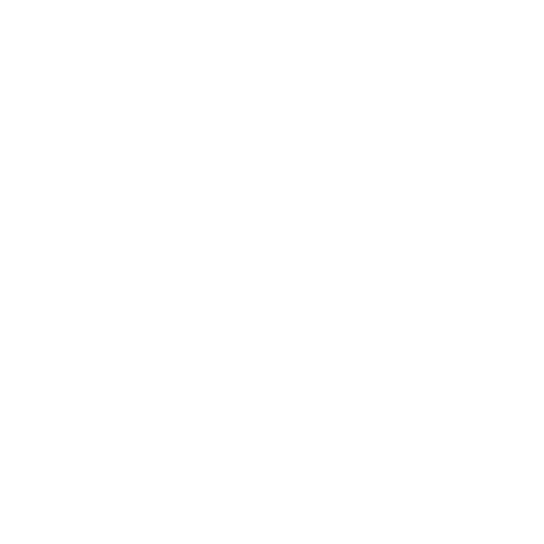 36 mm Kokos-Quelltabletten Coco Plugs (1.500 Stück) (mit Logo bedruckt) | Kokosquelltöpfe von