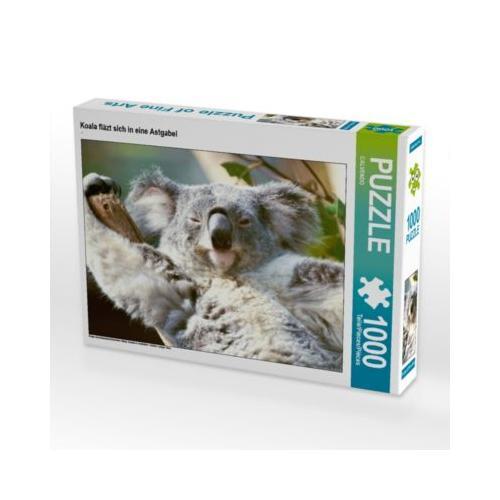 Koala fläzt sich in eine Astgabel Foto-Puzzle Bild von CALVENDO Verlag Puzzle